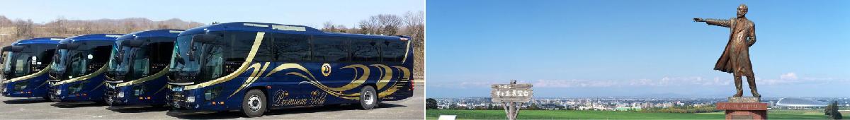 bus/taxi